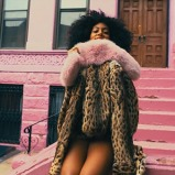 solange-knowles-locked-inclosets